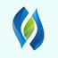 华夏蝌蚪窝一个释放的网站官方博客